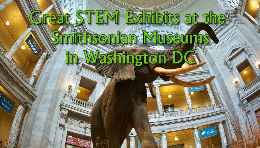 stem exhibits