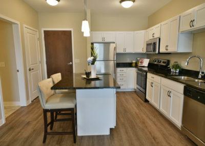 Kitchen in Senior Living Apartment