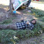 Bush Bed