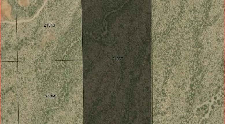 Marfa, Texas, $17,500, 20 Acre