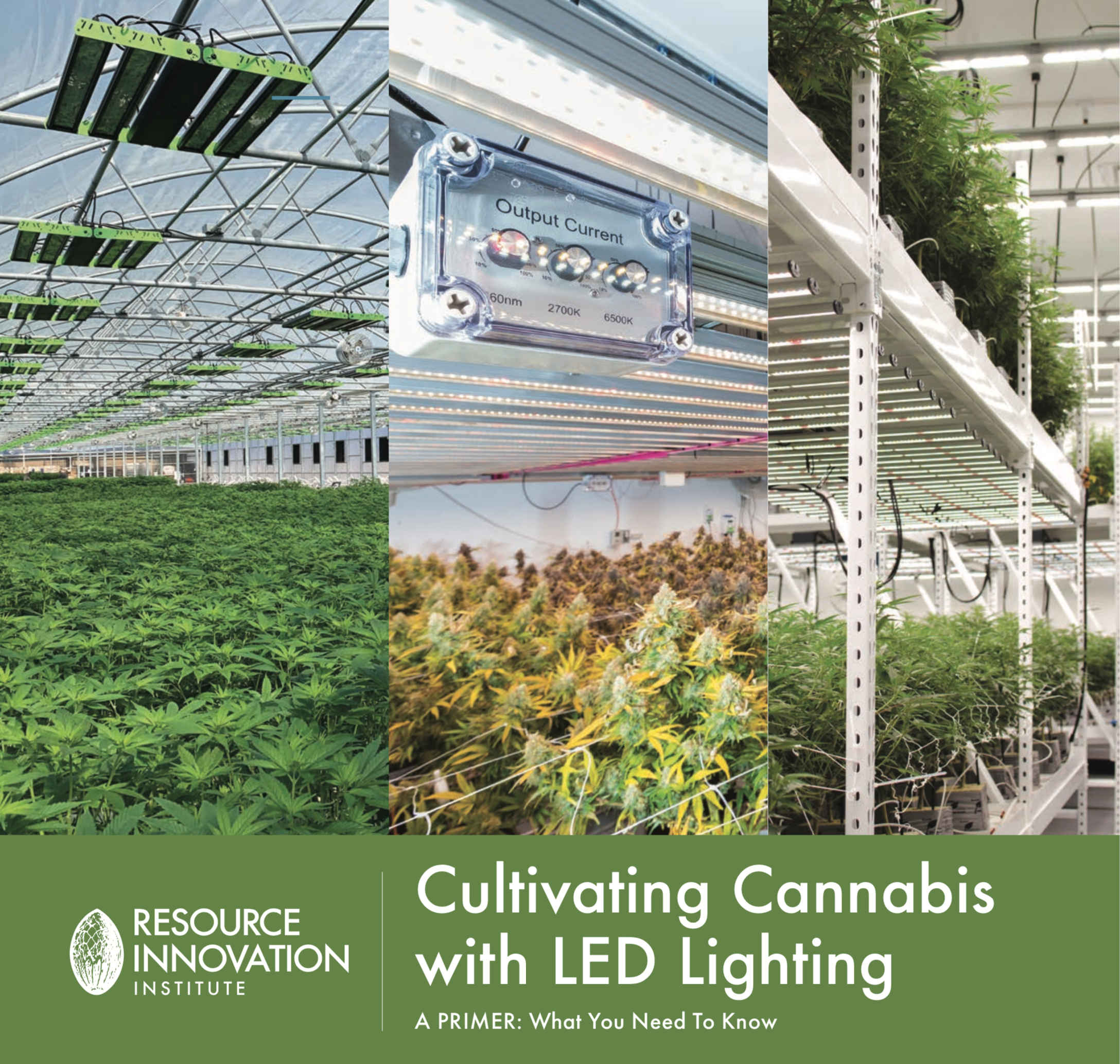 Resource Innovation Institute Releases Primer on LED Lighting
