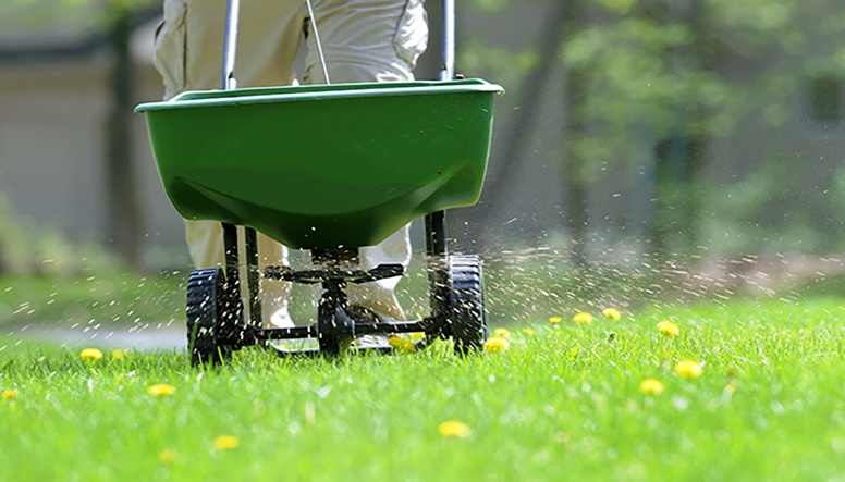Revive Your Lawn After Winter