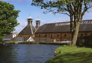 old bushmill's distillery, irish whiskey, irish pub, lakeway texas
