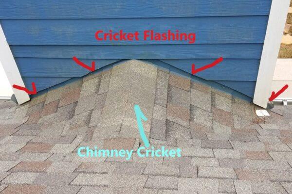Cricket-FlashingA-768x576