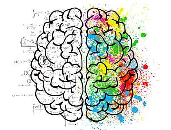Holistic Approach brain chemicals