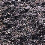 Pine Mulch Texture Closeup