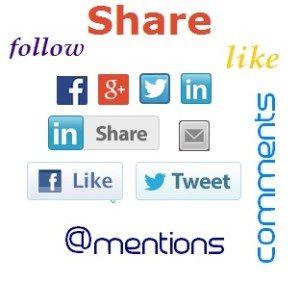 The BizPal Company, LLC Social Media Mix