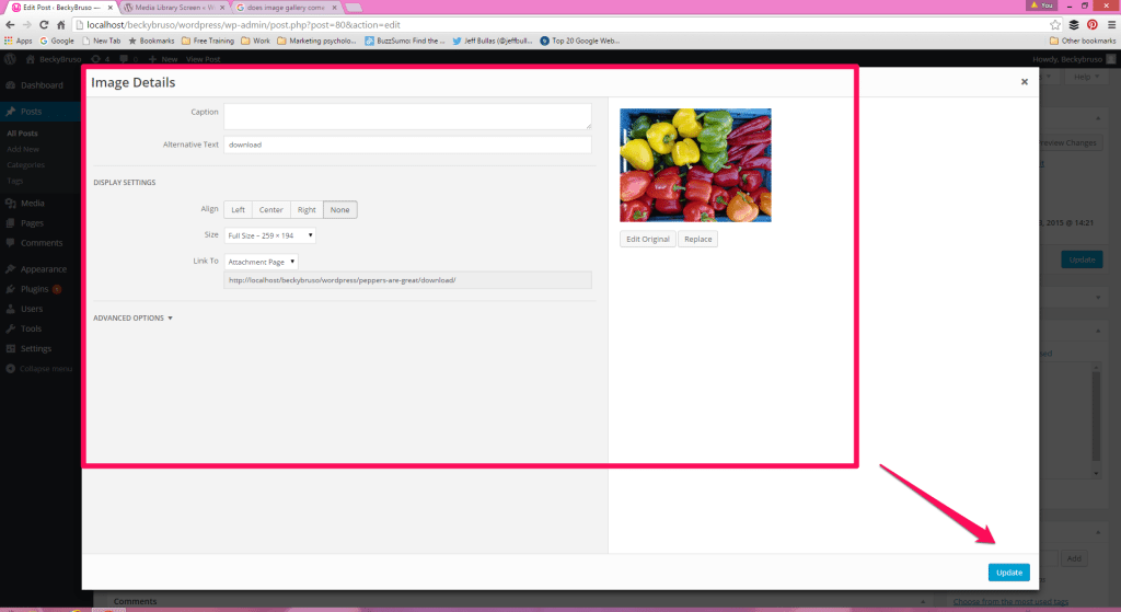 WordPress Image Detals Options