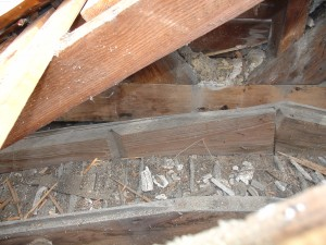 Fig. 6.  Rusticated siding used as nailers in south porch ceiling - photo courtesy Don Jordan and Peter Post.