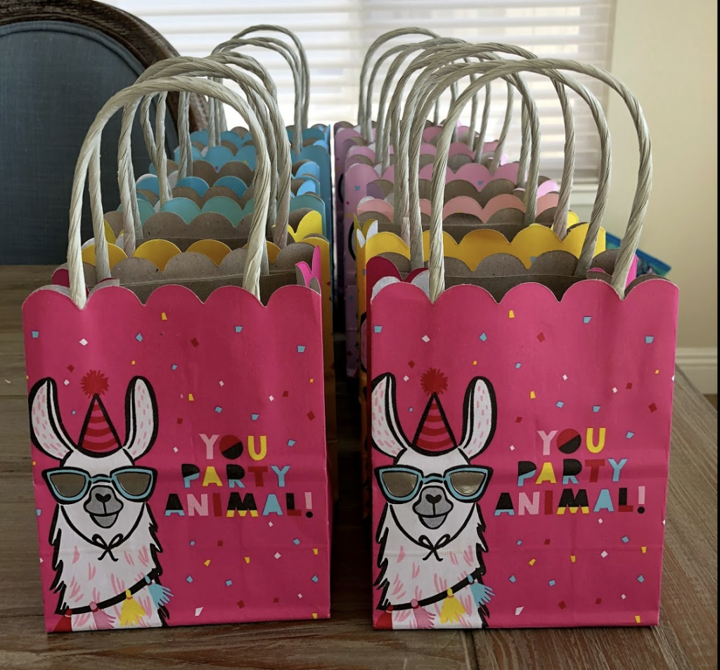 llama birthday party favors
