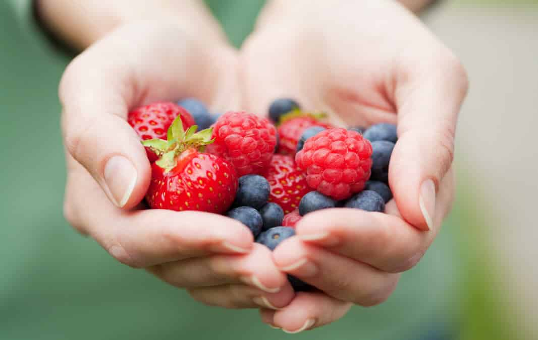 Holding a Strawberries on the hand