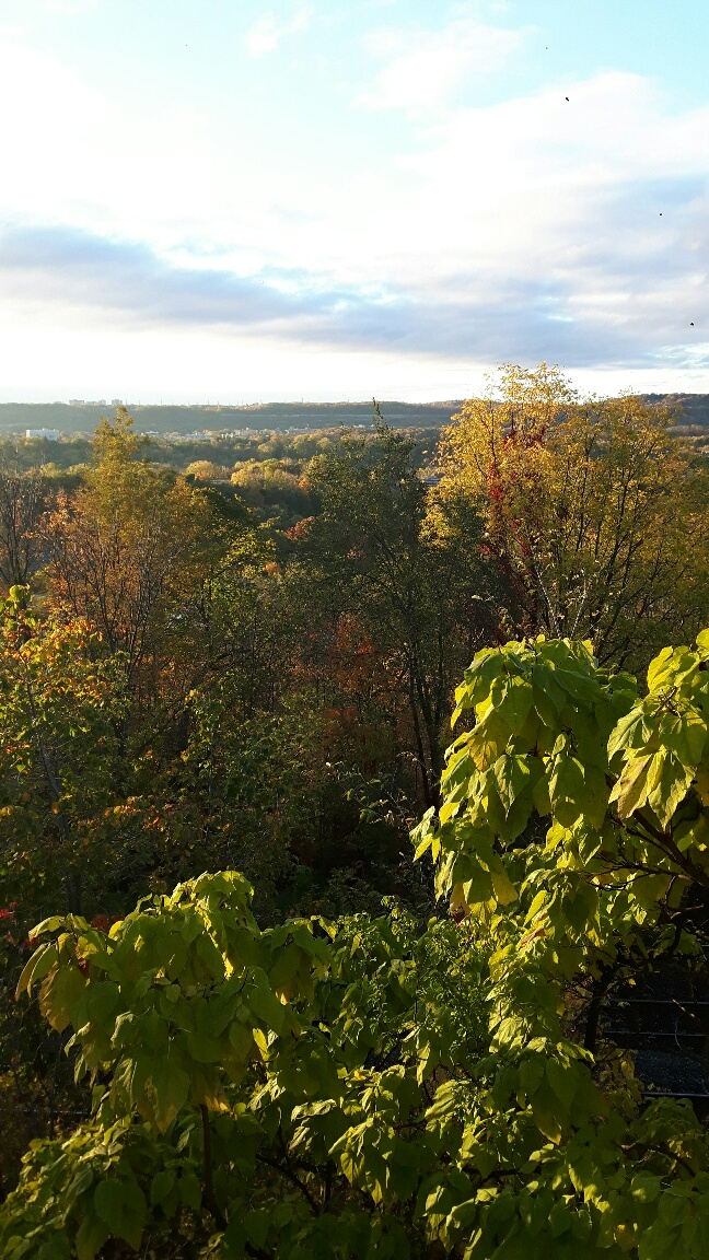 hiking-bruce-trail-viewpoint