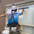 Edmonton Window Cleaners