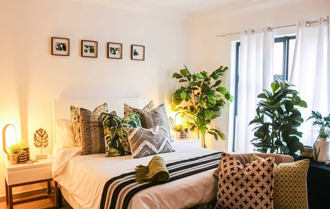 A tropically design bedroom with two fiddle leaf fig plants