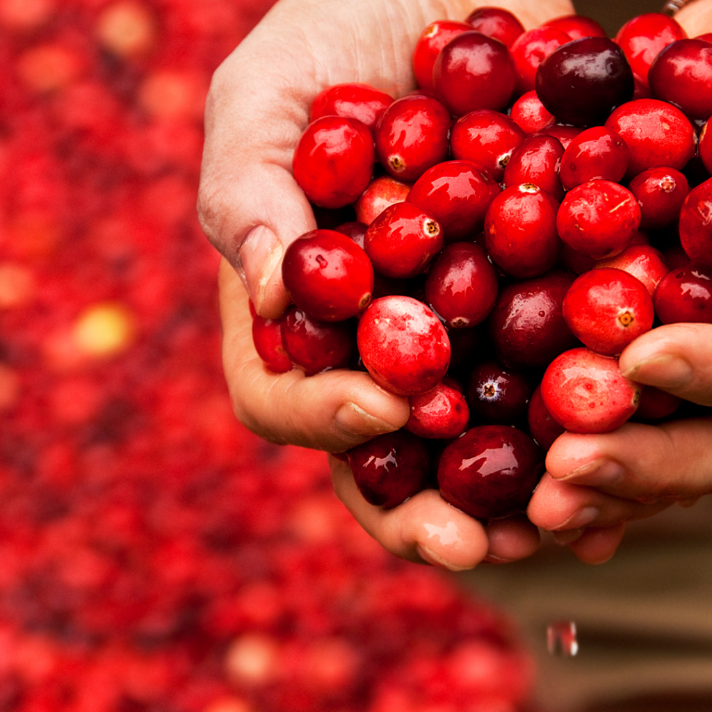 West Coast Cranberry Inspiration