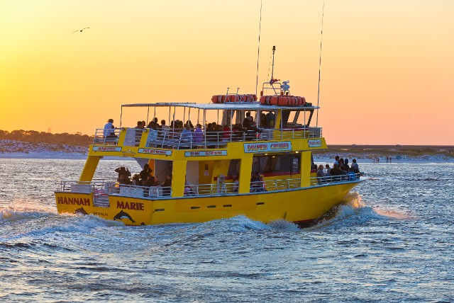 dolphin watching on a sunset cruise in Destin