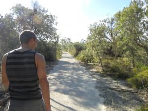 kangaroo-walk