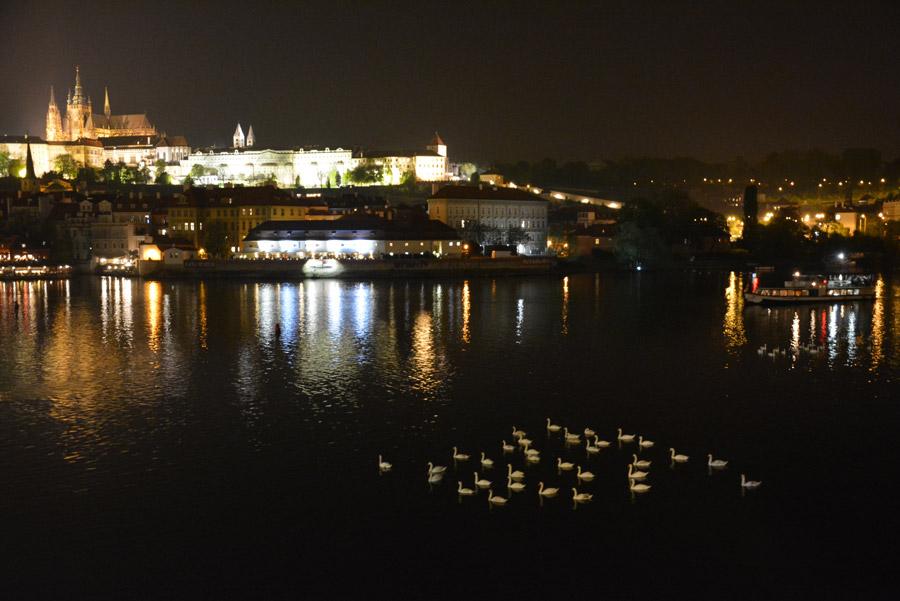 prague-castle-night