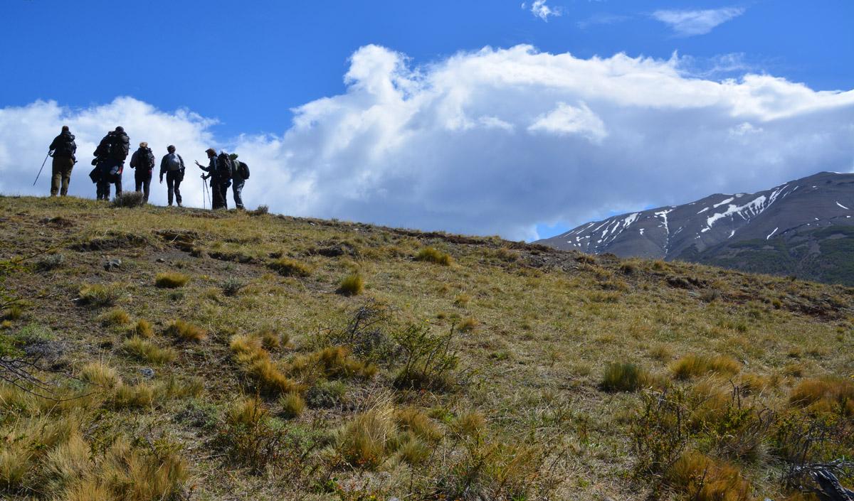 horse-trek-hill