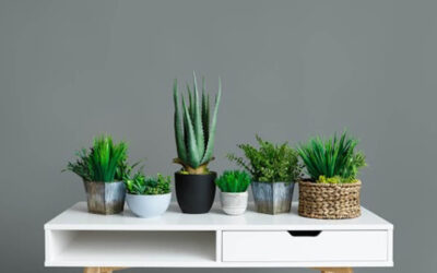 3 Features to Help Your Apartment Feel More Like a Home