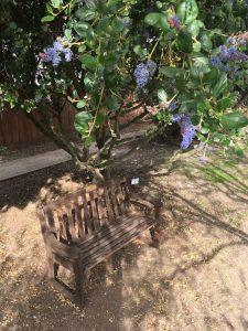 Guadalupe Native Garden Guadalupe, CA