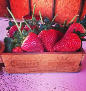 Strawberries with long stema