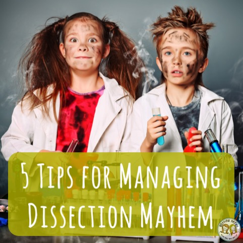 5 Tips for Managing Dissection in your Class