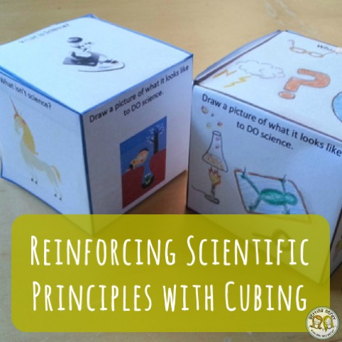 Lesson Plan: Reinforce Scientific Principles using this Cube Activity