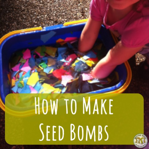 Lesson Plan: Making Seed Bombs