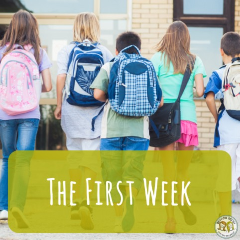 Lesson Plan: A timeline for what to do in the first week of life science