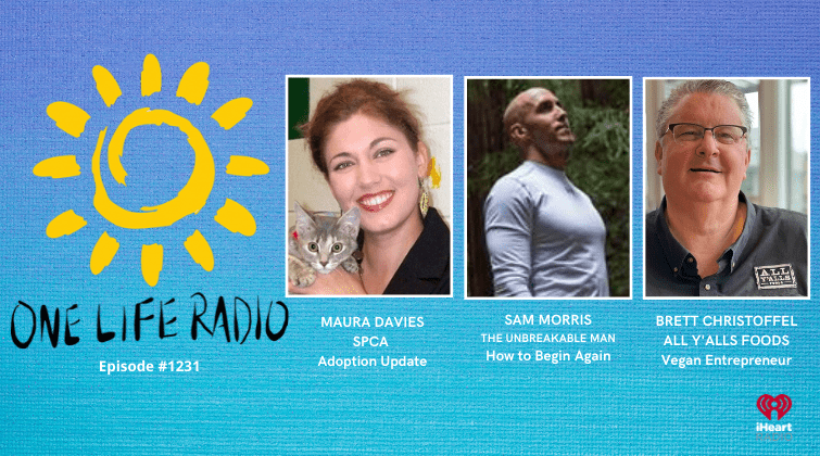 SPCA Drive Thru Adoption on One Life Radio