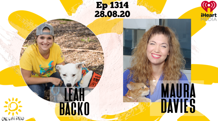 Leah backo, Maura Davies, dallas animal services
