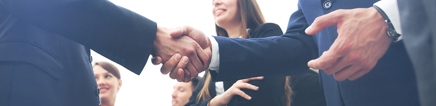 Alliances Banner Picture - Handshake. Group of business people.