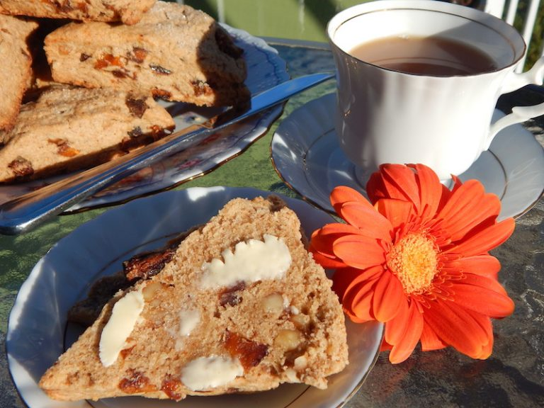 Ancient Grain Apricot & Walnut Scones | Anita's Organic Mill