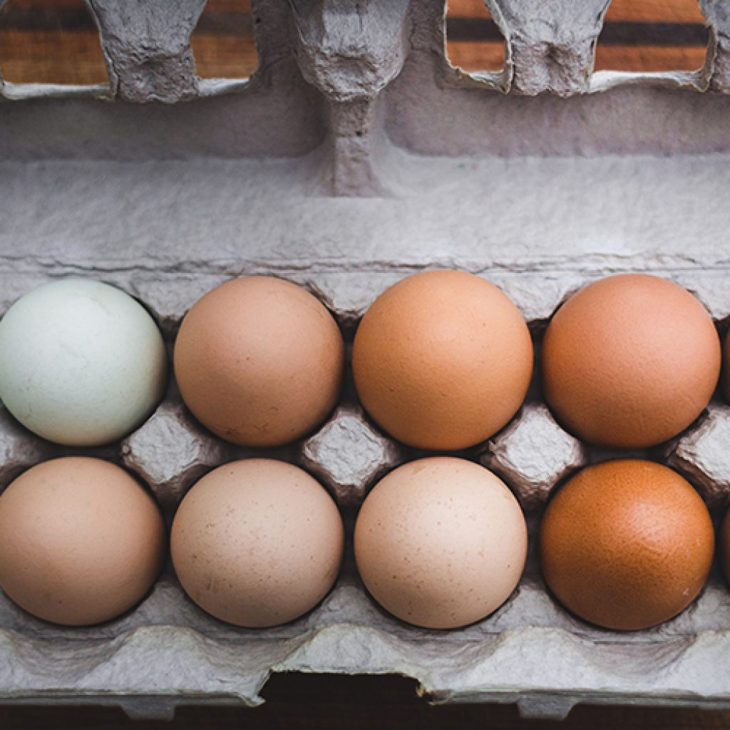 Egg Substitutions | Anita's Organic Mill