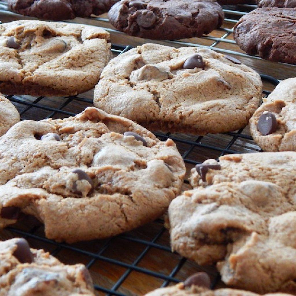 Fruity Chocolate Einkorn Cookies | Anita's Organic Mill