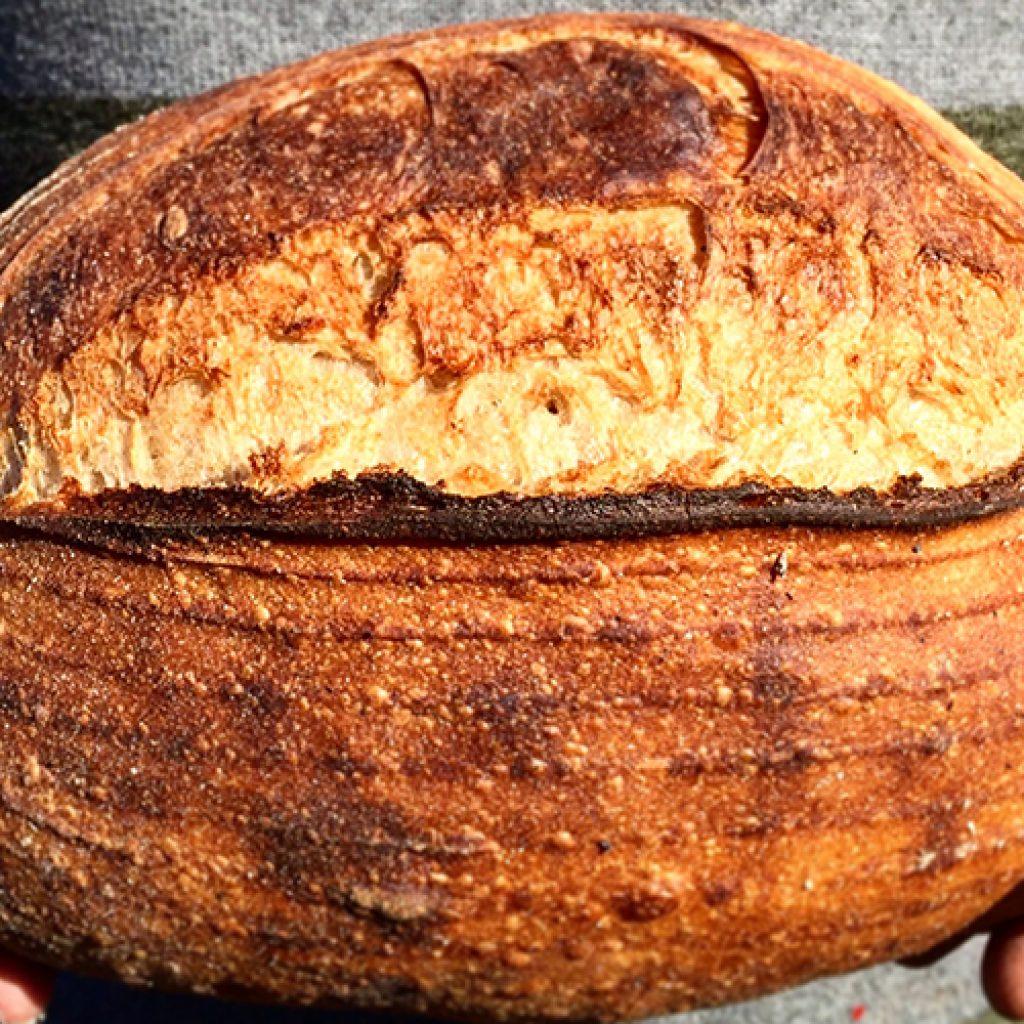 Mark's Basic Sourdough Recipe   Anita's Organic Mill