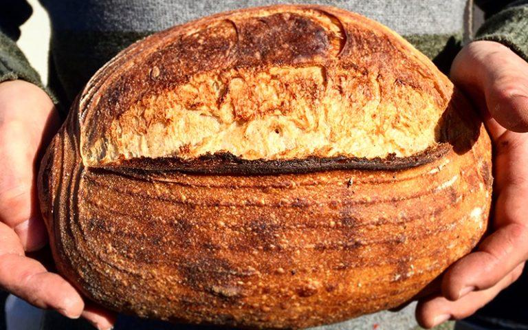 Mark's Basic Sourdough Recipe | Anita's Organic Mill
