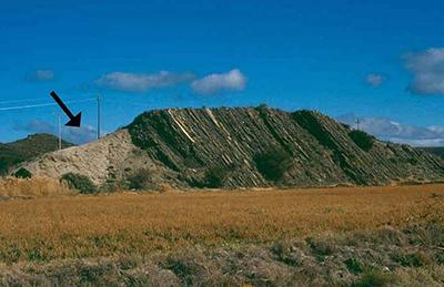 Whitehill Namibia