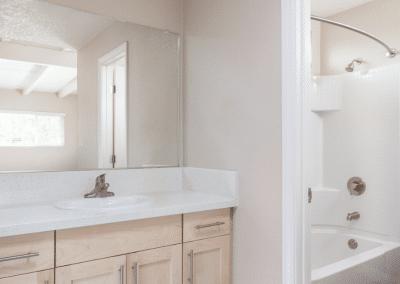 Bathroom vanity, shower and tub