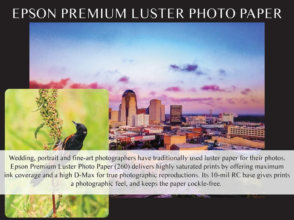 Epson Premium Luster - Skyline