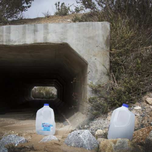 """IMPERIAL COUNTY, CA 03/10/2019:  Border Angels led a team of volunteers, including a group of students from University of Utah, and carried gallons of water into the Imperial Valley in southeastern Southern California near the Mexico border and hid the plastic bottles scattered along trails that undocumented migrants often take after crossing into the California.  Along the trails, discarded items such as makeshift foot coverings migrants use to avoid leaving footprints could be seen as well as other discarded clothes and remnants of campfires. The conditions here are extreme, often were windy and cold at night, and extremely ward during the daytime. Border Angels is a nonprofit that has been leading humanitarian efforts such as """"water drops"""" in the desert for migrants for over 20-years. In 2019, two border aid volunteers were sentenced to 15 months of probation, must pay fines for dropping off water and food intended for migrants crossing through a protected desert area in southern Arizona."""