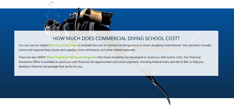 Divers Academy Landing Page