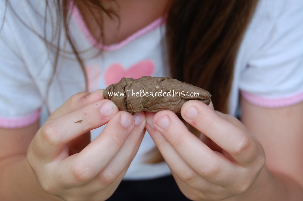 Need a cheap, easy, green, and FUNNY craft to do with your kids? Check out my POOTORIAL on making fake turds using recycled materials and just two other ingredients. HILARIOUS and practical. Kids (and fun parents) LOVE this.
