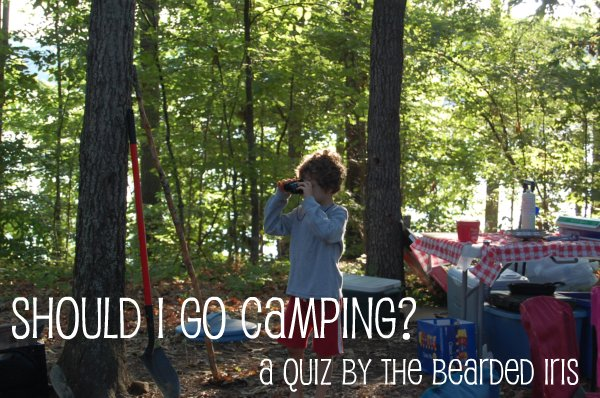 Should I go camping? (A quiz.)