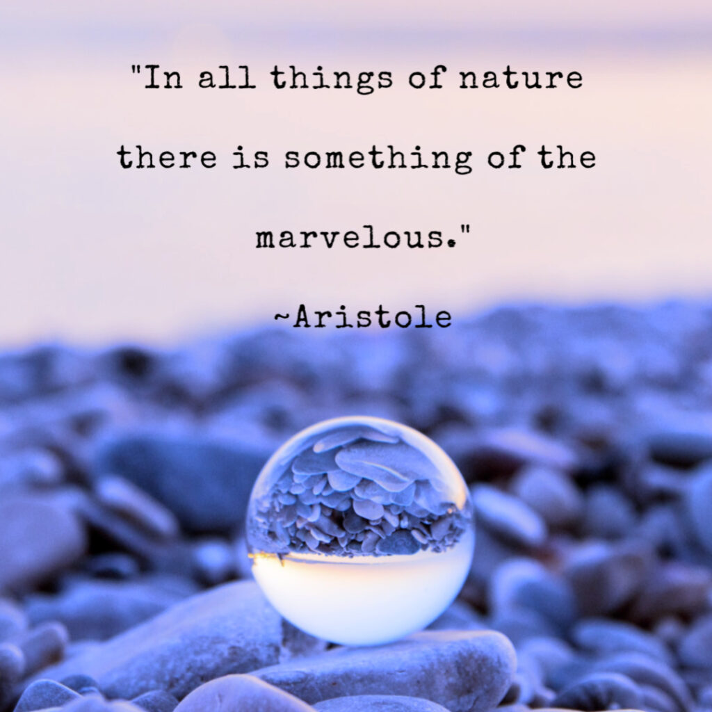 "Aristole Quote ""In all things of nature there is something of the marvelous."" beholdher.life"