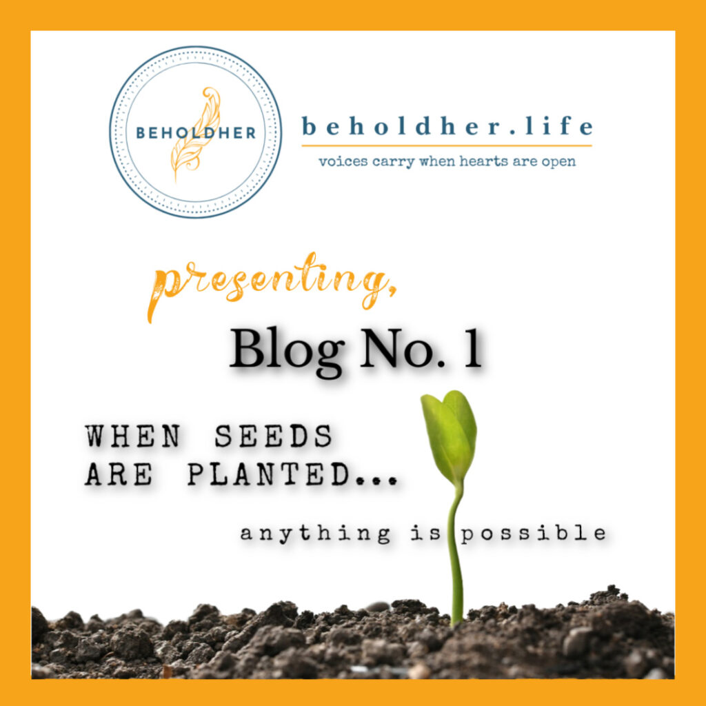 beholdher.life Blog No 1 - When Seeds Are Planted Anything is Possible Cover Image - Seed sprouting from soil