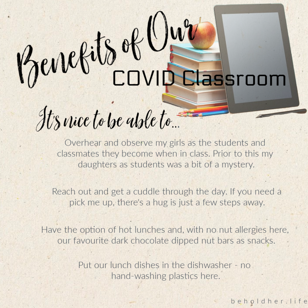 Benefit of Our COVID Classroom  A list of benefits that can be indulged because of homeschooling beholdher.life