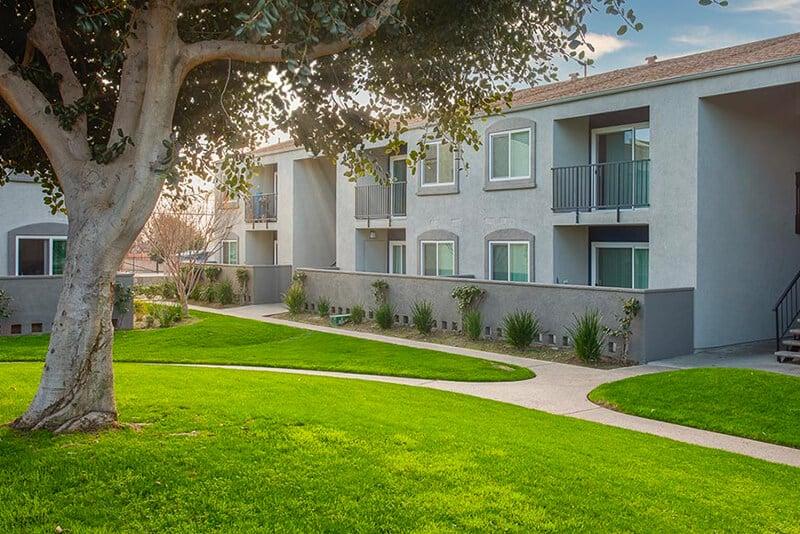 Grassy courtyard with sidewalk path