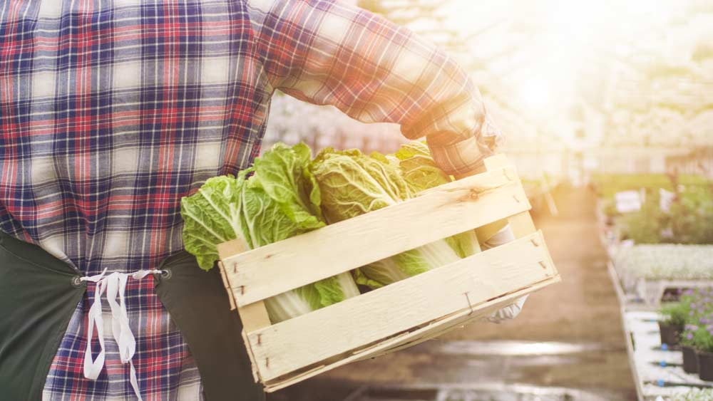 Find Local Farms Near You
